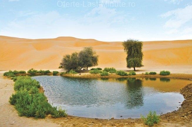Liwa Oasis