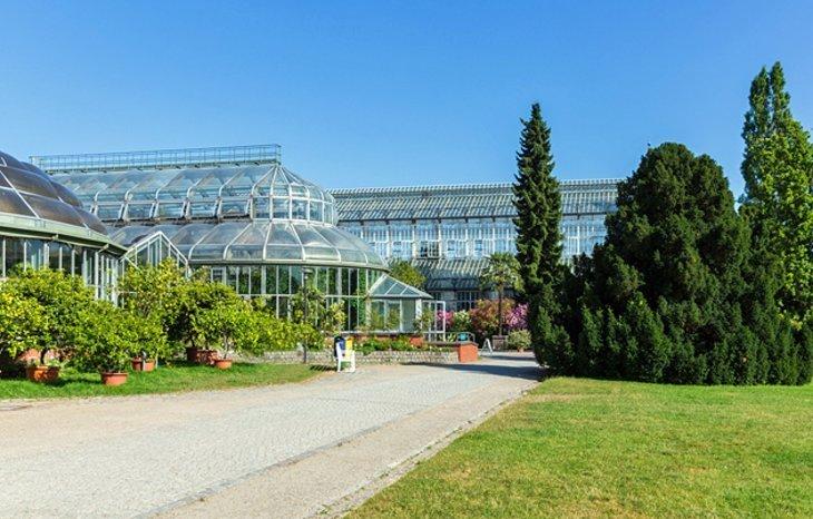 Grădina și muzeul botanic Berlin-Dahlem