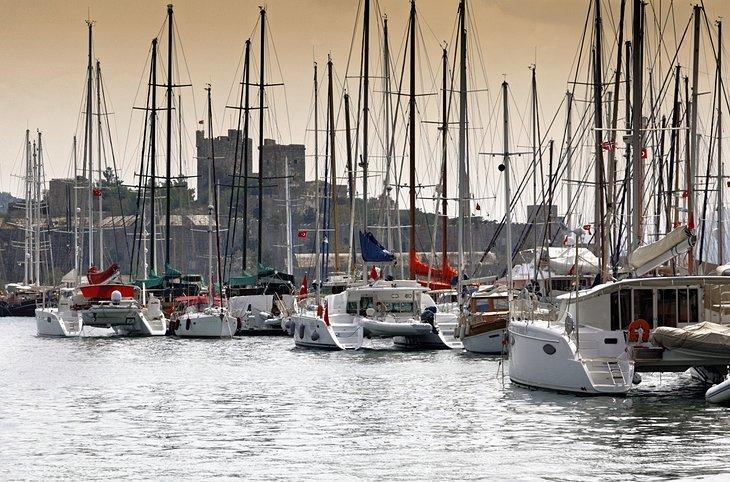 Marina și Șantierul Naval