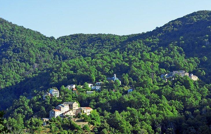Regiunea Castagniccia