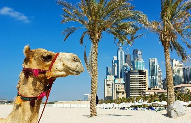 Bucurați-vă de soare la plaja Jumeirah