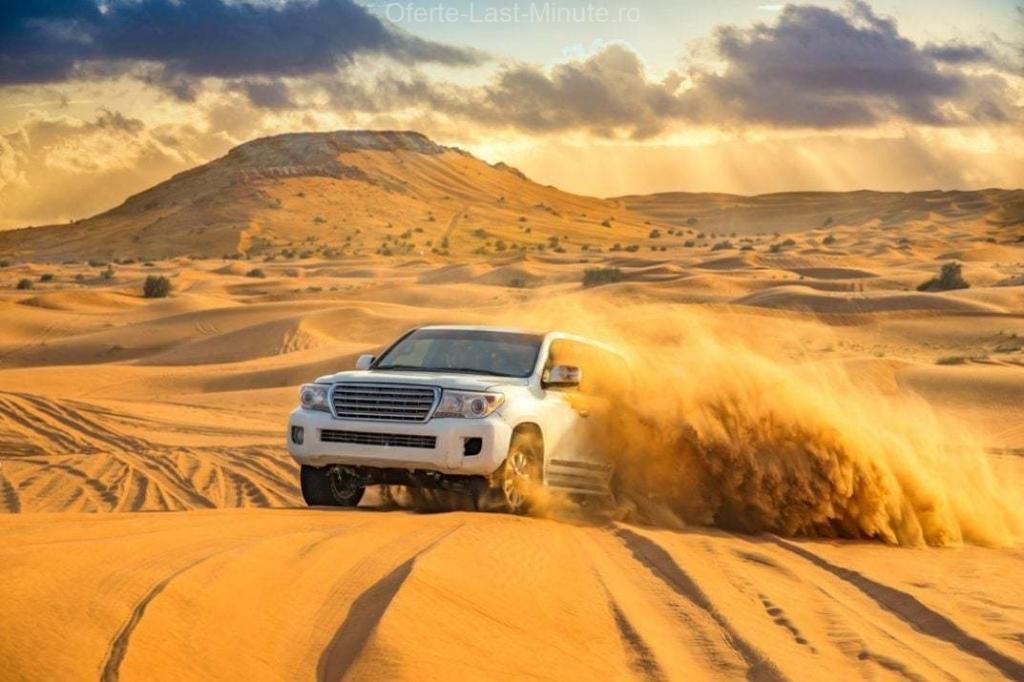Safari in desert