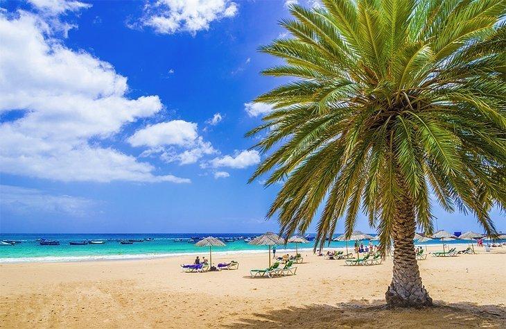 Plajele din Tenerife
