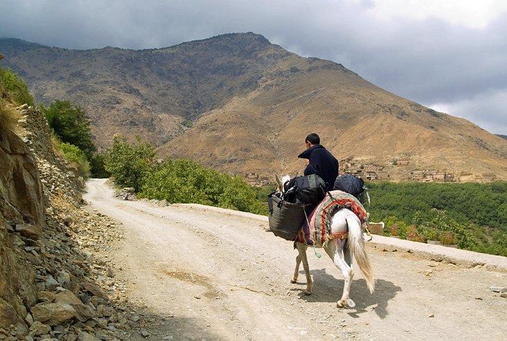 Parcul Național Toubkal