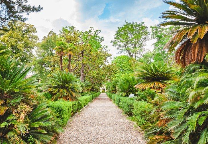 Orto Botanico (Gradina Botanica)